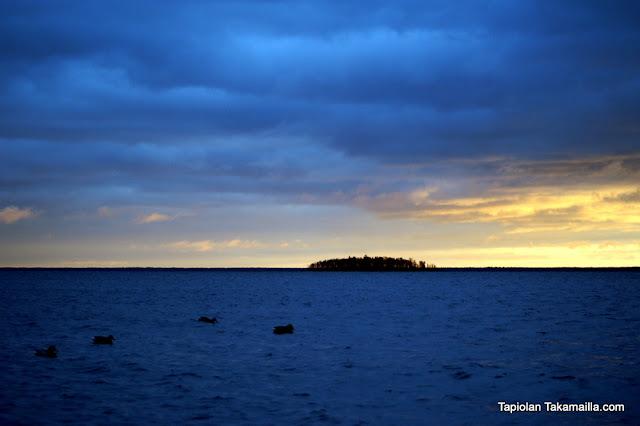 sorsajahti merilinnustus merimaisema auringonnousu kuvapyynti houkuttelupyynti
