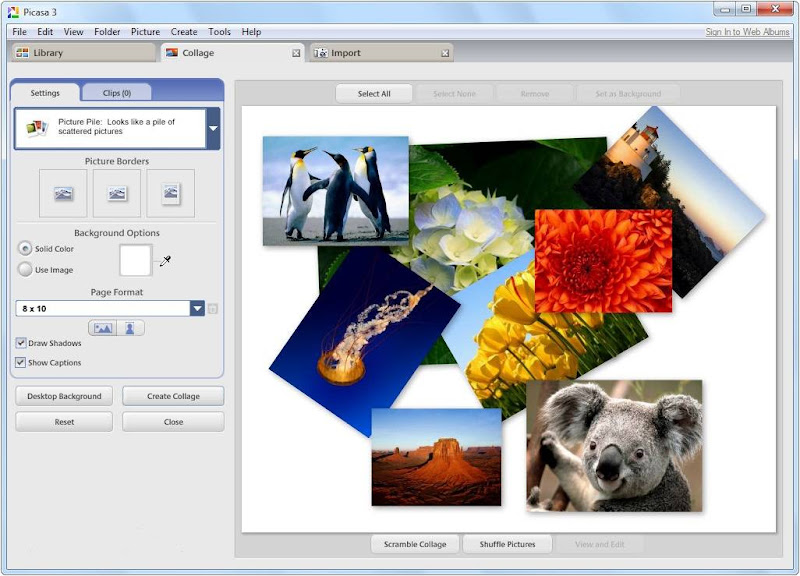 Screenshot of Picasa v.3.9 Build 136.20 Photo Organizer PC Software Free Download at Alldownloads4u.Com
