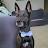 Sarahi Ayala avatar image