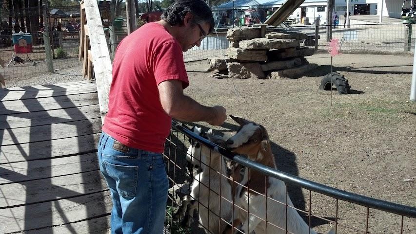 Raj + Goats