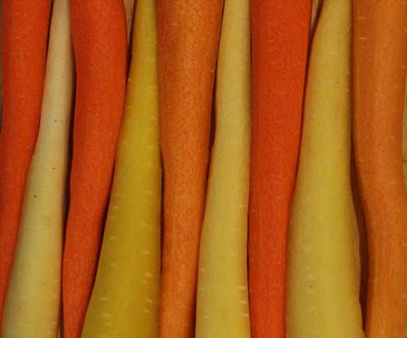 yellow and orange carrots arranged in stripes