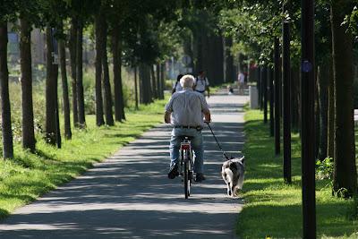 En sykkel med oppreist og behagelig sittestilling
