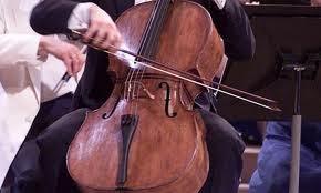 10 - O escroto de violoncelo