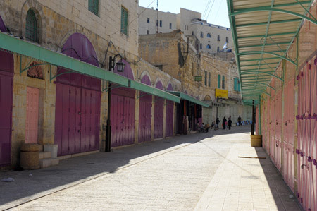 Mi viaje por Palestina