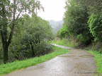 Southern Marin Line Fire Road