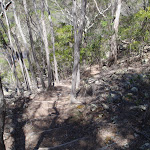 Track down from Field Study Hut (105736)