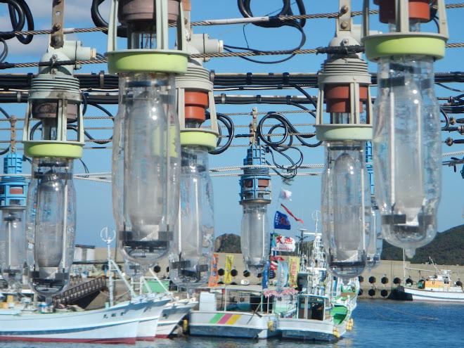 勝本漁港のイカ釣り漁船