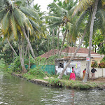 "Photo de la galerie ""Le Kérala et ses backwaters"""
