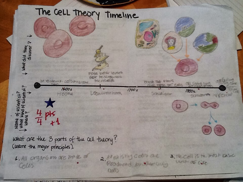 Seventh grade Lesson The History of The Cell Theory