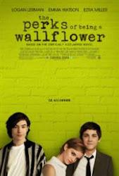 The Perks of Being a Wallflower - Câu chuyện tuổi teen