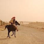 Syria - 03 - Palmyra / Tadmur
