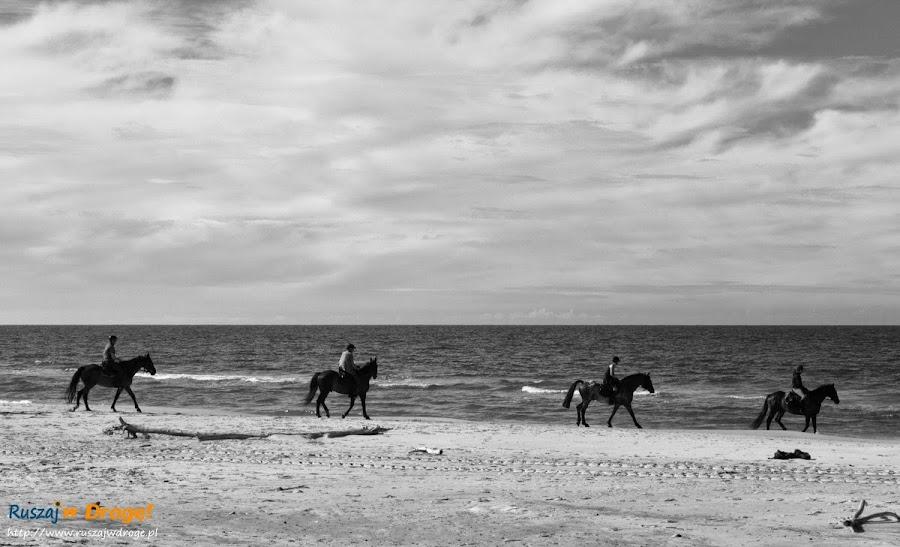 Morze Bałtyckie - plaża w Czołpinie