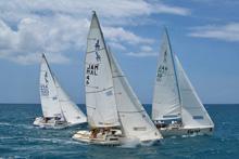 J/22s sailing off Jamaica