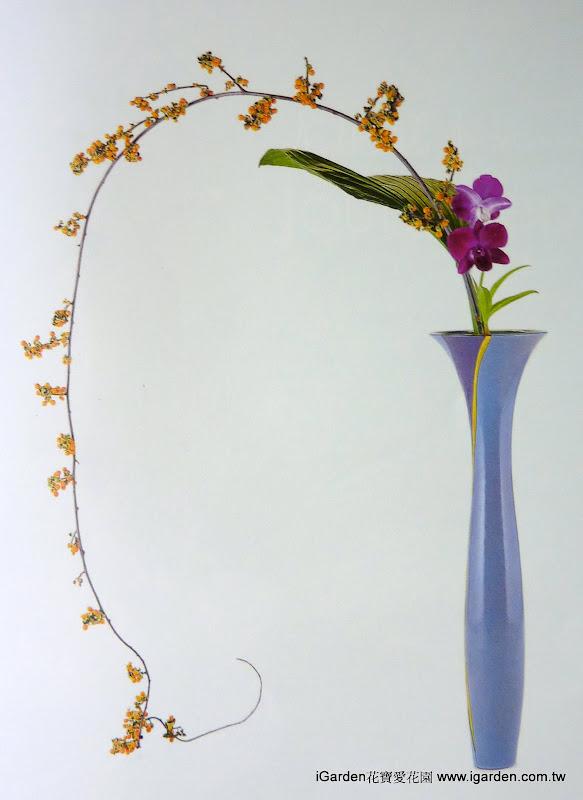 台灣花藝-秋意輕垂 | iGarden花寶愛花園