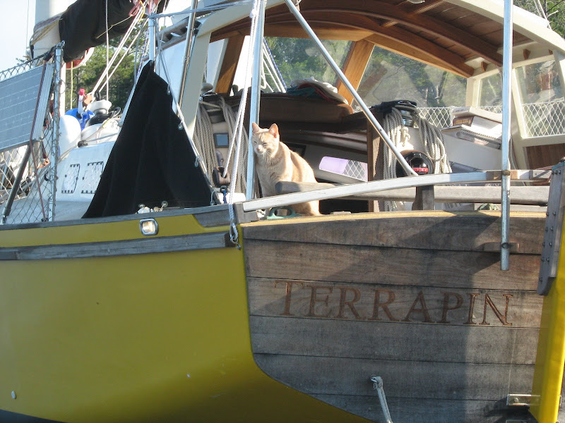 Finally, we got the name on the boat, carved in the transom (by now it is painted bright yellow).