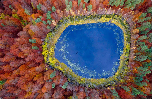 The world from above - A Lake in Pomerania, Poland.jpg