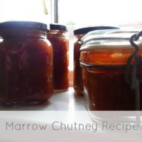 Marrow Chutney