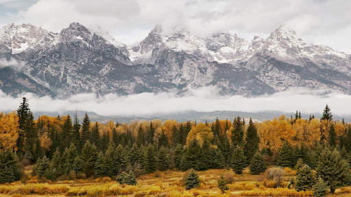 Mountains in the Mist, Grand Teton National Park, Wyoming.jpg