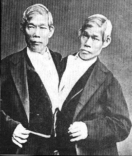 Siamese-Twins.jpg