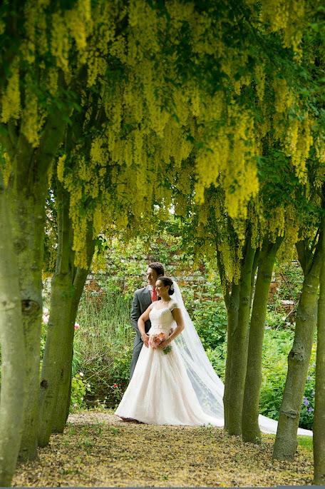 Blush Pink Wedding Dress - Estilo Moda Bridal Reviews and Testimonials