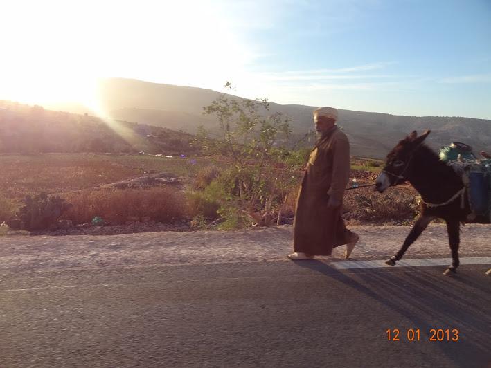 Marrocos e Mauritãnia a Queimar Pneu e Gasolina - Página 2 DSC05535