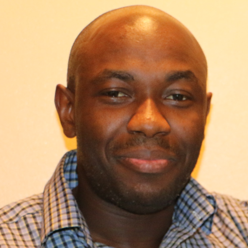 Adeyemi Salau