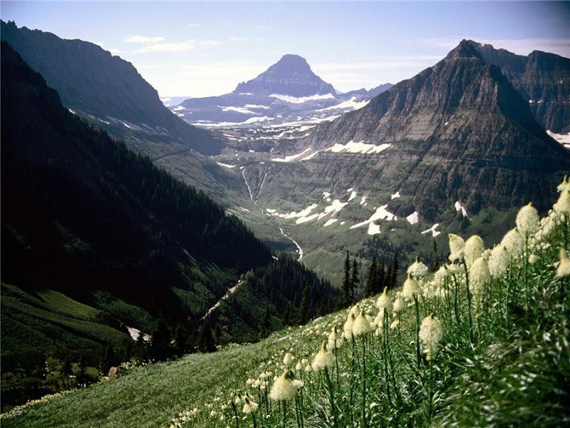 Национальный парк Глейшер. Штат Монтана.