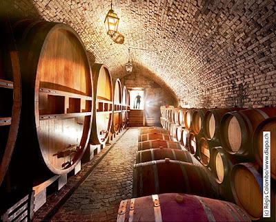 Les plus beaux domaines viticoles de Suisse