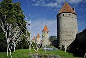 Башни Старого Таллина