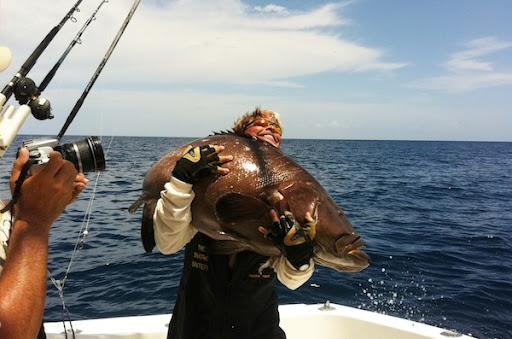 World Record Black Grouper by Robby Campbell