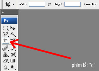 crop function in photoshop