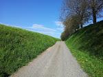 Unser täglicher Spazierweg