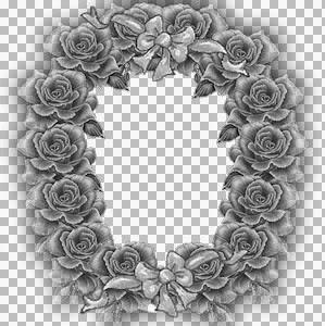 DS-roses.jpg