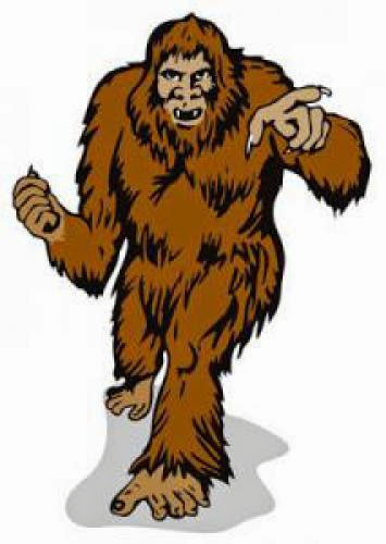 Daisy Is In My Warehouse Nevada Man Claims To Have Bigfoot Corpse