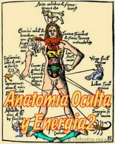 Anatomia Oculta Y Energia 2
