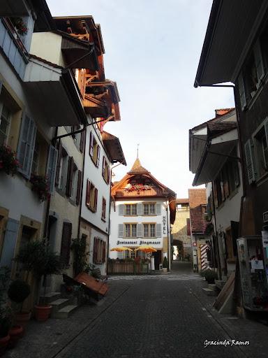 passeando - Passeando pela Suíça - 2012 - Página 15 DSC05491