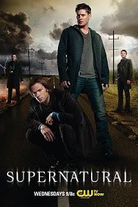 Siêu Nhiên (Phần 8) - Supernatural Season 8 poster