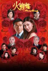 Flaming butterfly - Hỏa hồ điệp TVB