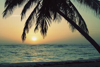 Sunrise in Paradise - Punta Cana, Dominican Republic