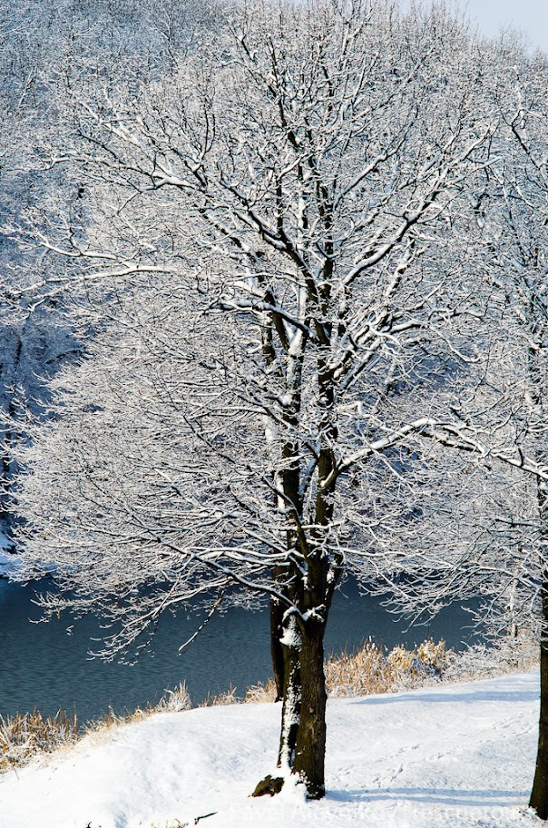 Зимняя плотина. Торез