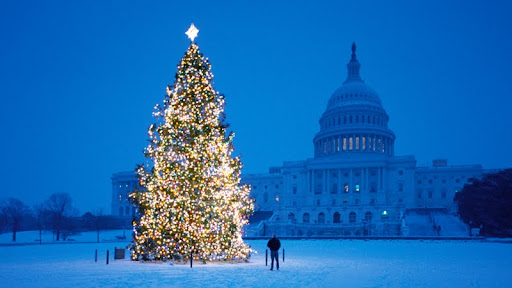 Christmas at the Capitol, Washington, D.C..jpg