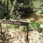 Cappers Gully (200467)