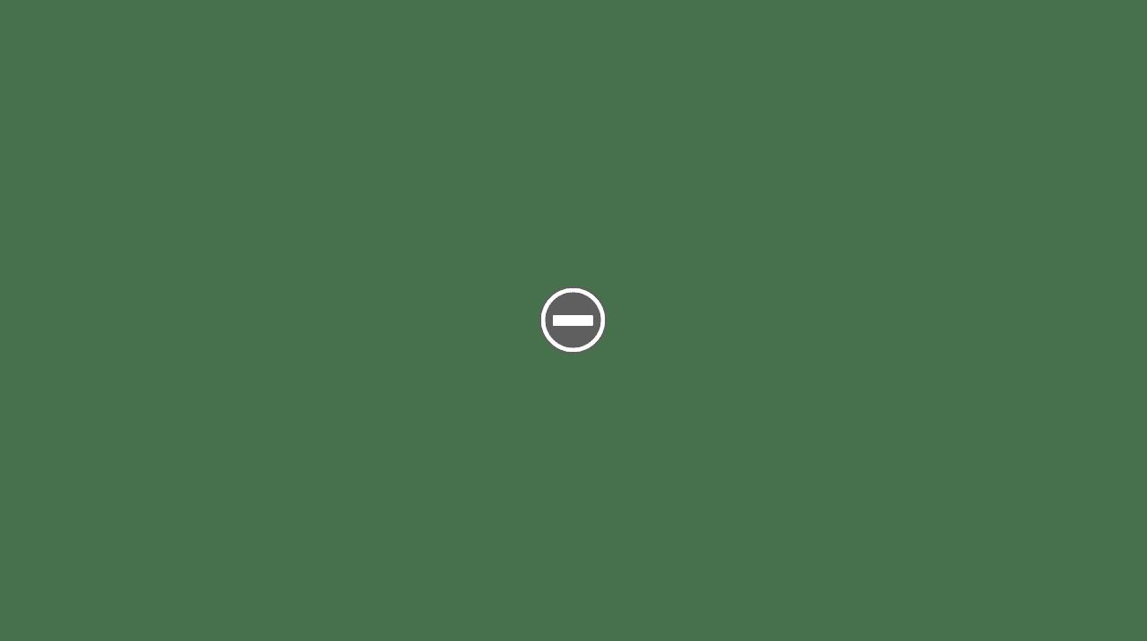 shavette VANTA SOLINGEN RA111 IMG_0135+%2528Custom%2529