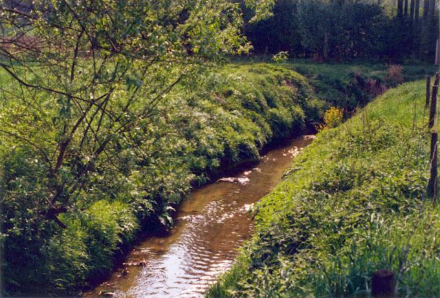 Figuur 4: De Mene ten zuiden van de Ziegelberg.