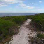 Track through the low heath (105211)