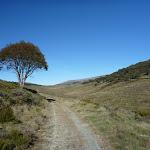 Cascade Trail (283637)