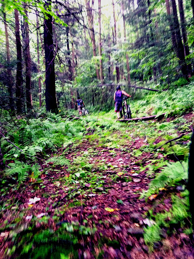 Ohiopyle single track wilderness Voyageurs