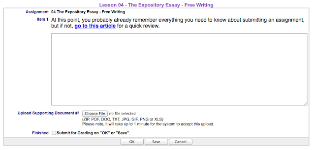 expository essay assignment doc