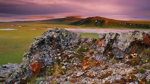 Arctic Coastal Plains, Top of Engigstciak, Ivvavik National Park, Yukon, Canada.jpg