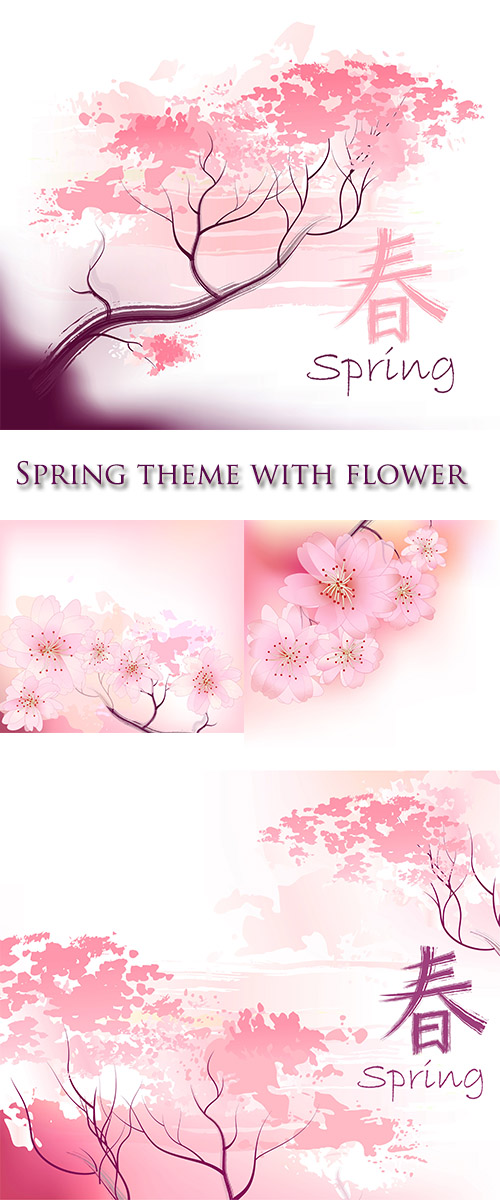 Stock: Sacura spring cherry tree branch in bloom